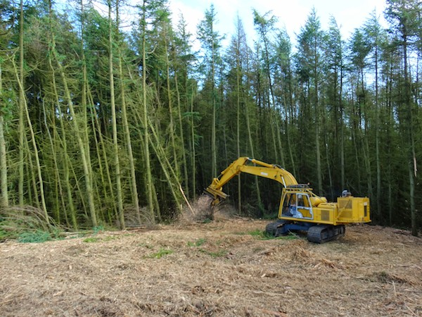 kobelco power pack excavator whole tree removal excavator mulcher hire